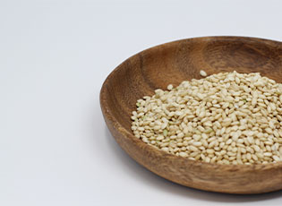 Sprouted Rice Thumbnail