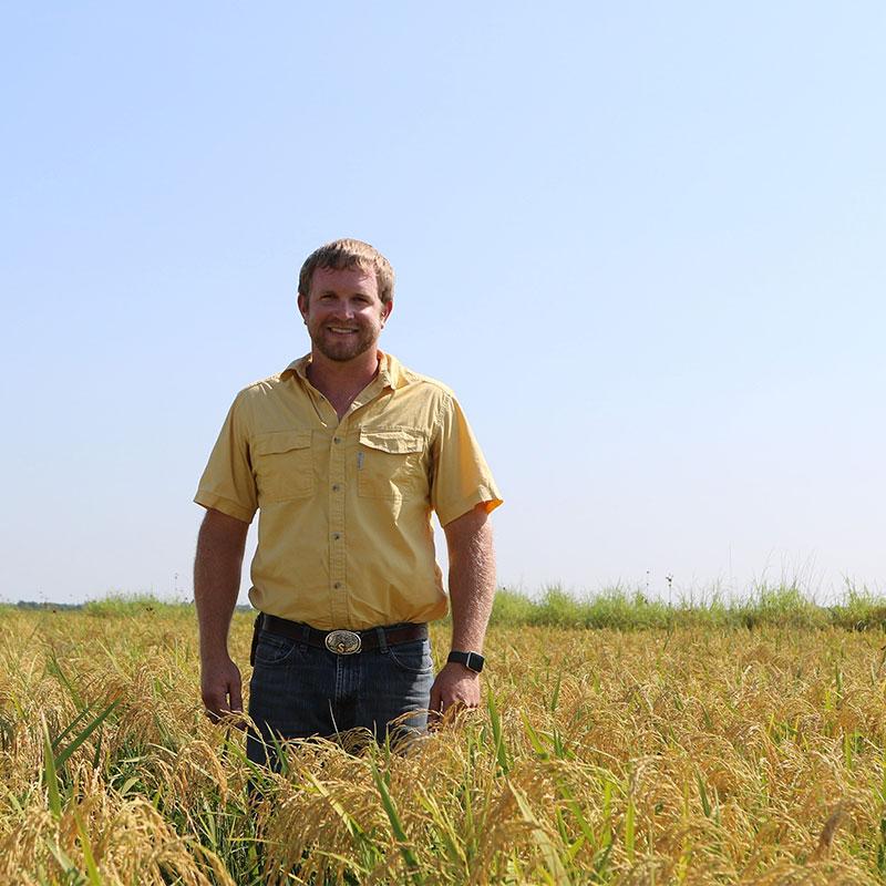 Rice farmer, Scott Savage, standing in a rice field.