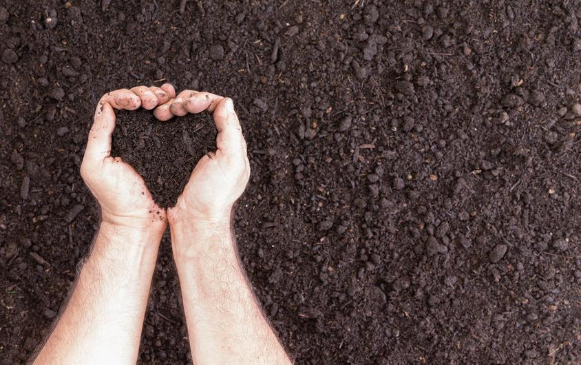 Heart hands in dark soil