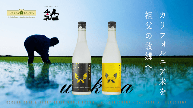 Sake ad with person standing in flooded rice field in the background and two bottles with black and yellow labels in foreground