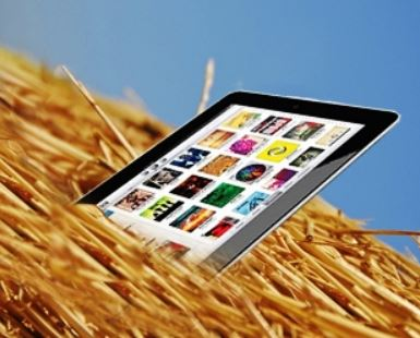iPad sticking out of haystack