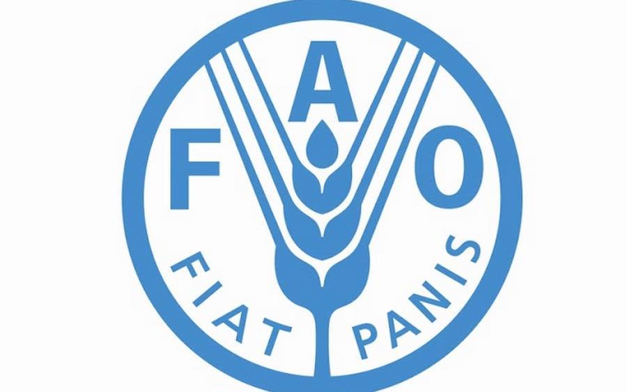 Food & Ag Organization of the UN logo