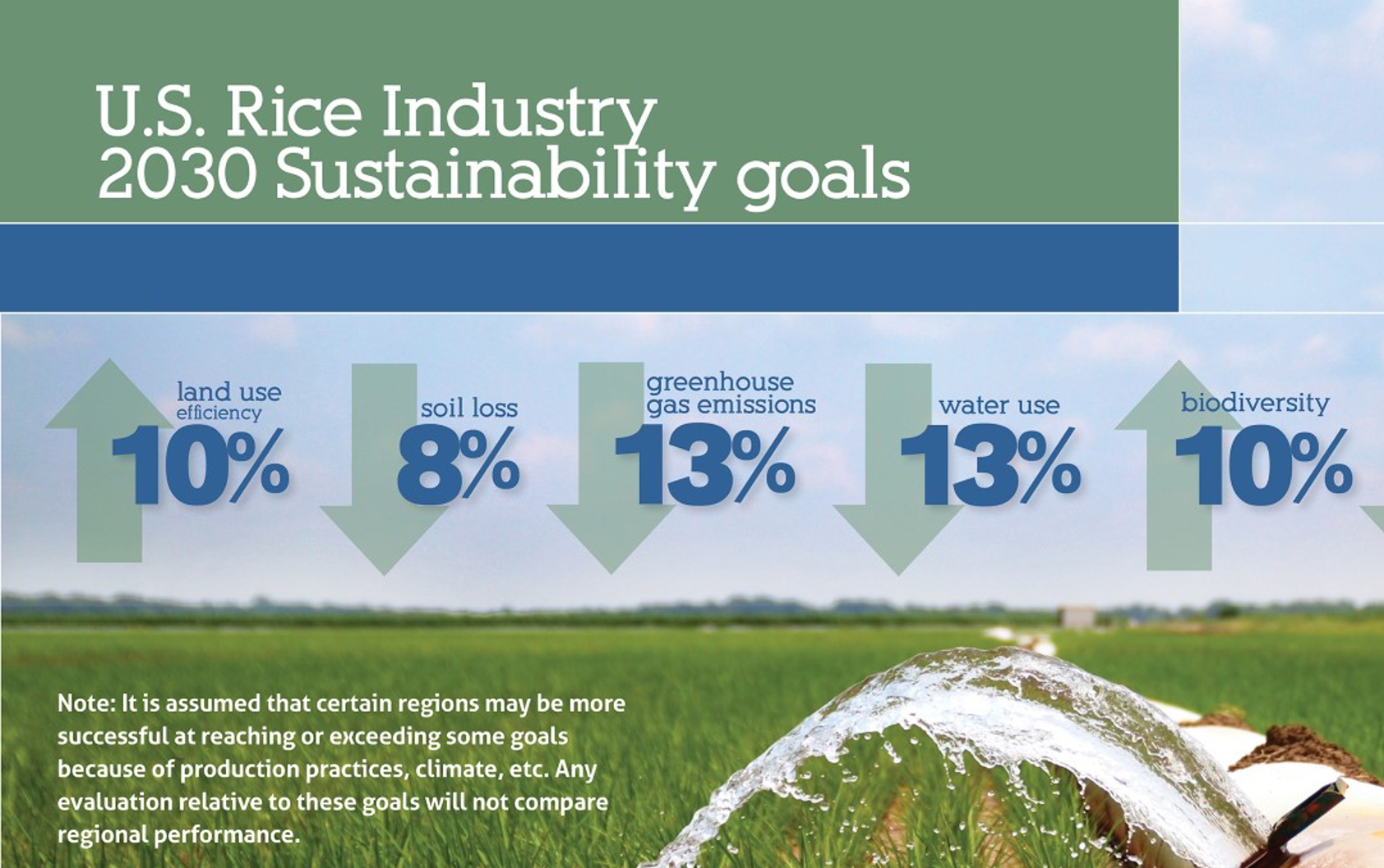 Sustainability graphic with 2030 rice industry goals shows water flowing from polypipe onto green rice field