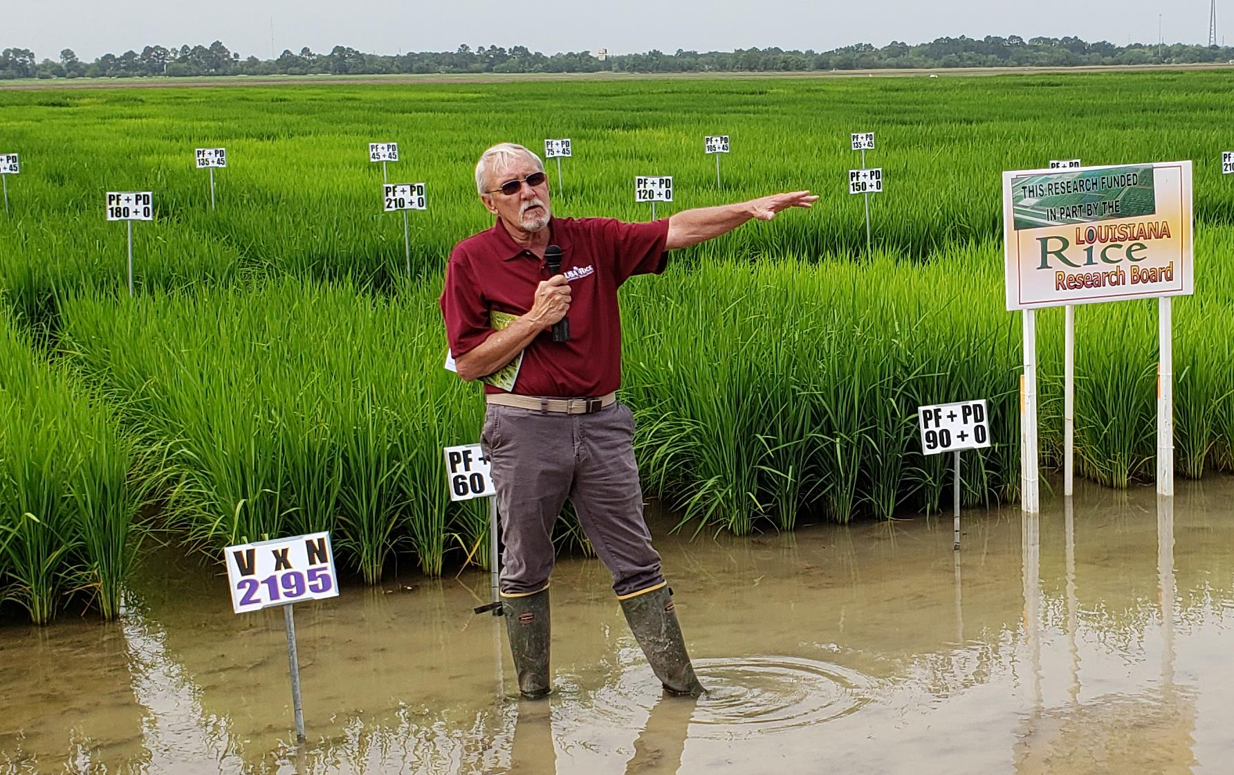 Man wearing knee-high boots, holding a mic and pointing, stands in flooded rice field