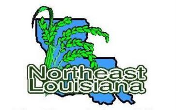 NELA logo, map of LA with green rice stalk