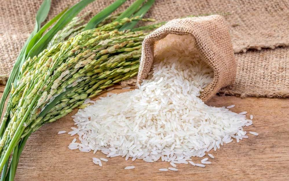 White rice spilling out of burlap bag, next to bundle of rice shocks