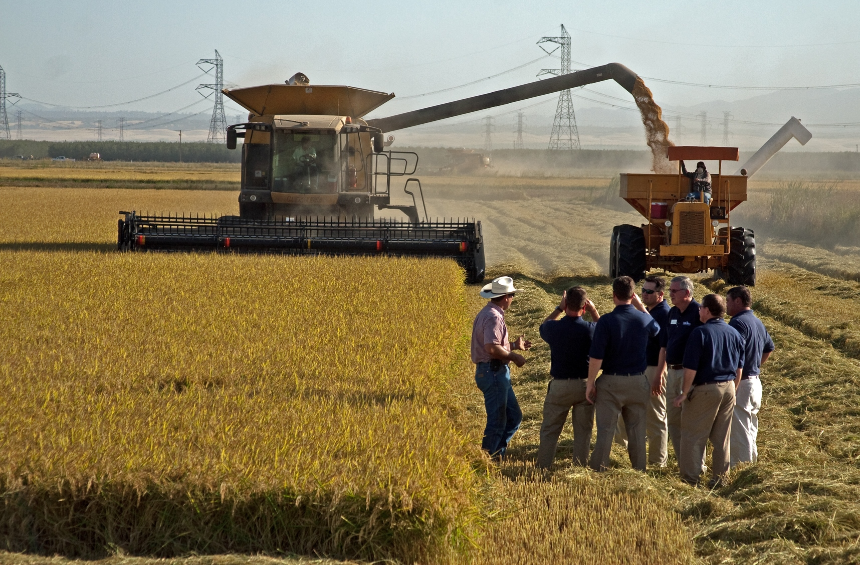 Rice Leadership Class Observing Harvest in California, standing in field near combine and bankout truck