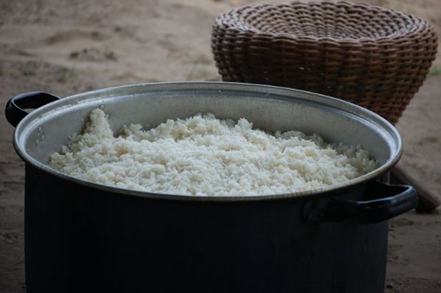 Image of a large pot of cooked rice