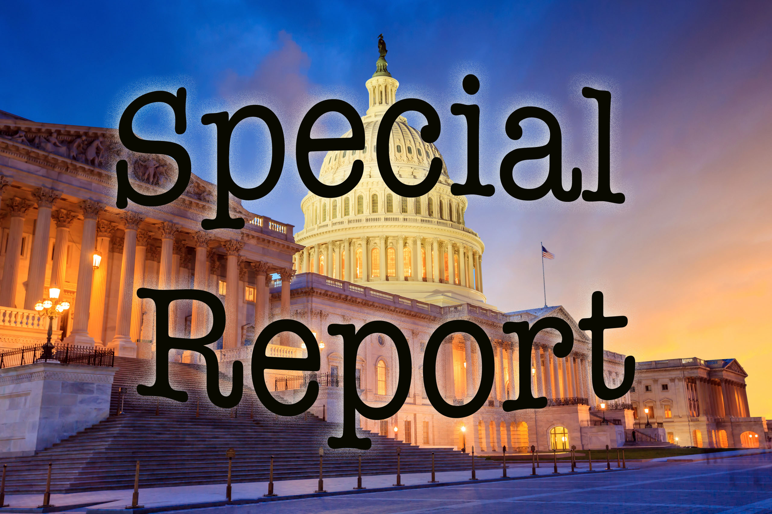 Capitol Special report copy