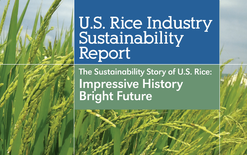 U.S. Rice Sustainability Report Cover, closeup of green rice in field with gray sky