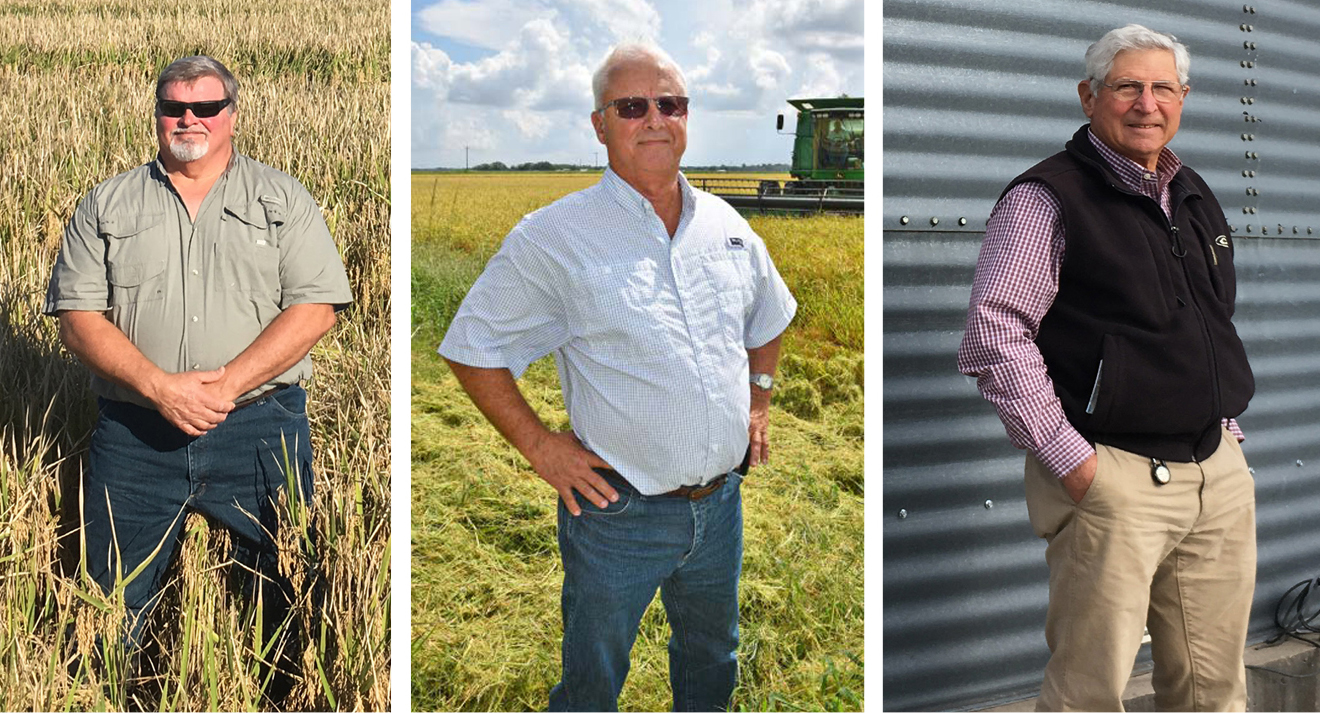 2018 Rice Awards Winners, three older casually dressed white men, first two standing in rice fields, third one standing in front of grain bin