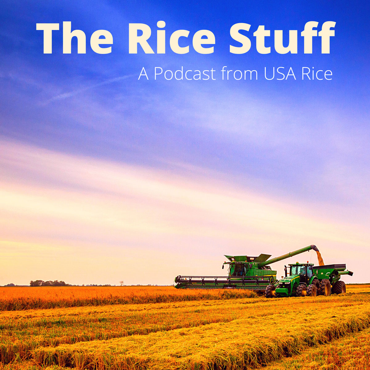 The Rice Stuff Podcast logo shows harvest equipment in golden rice field with vast blue sky above