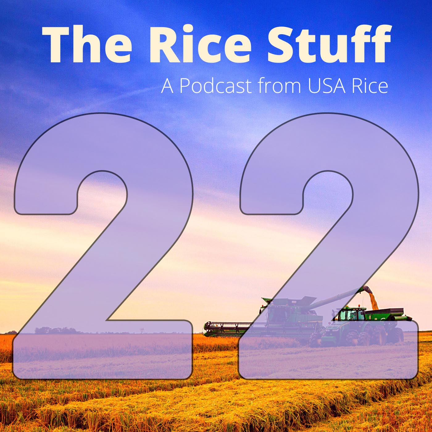 COMM-The Rice Stuff Tile Final Ep-22-210525