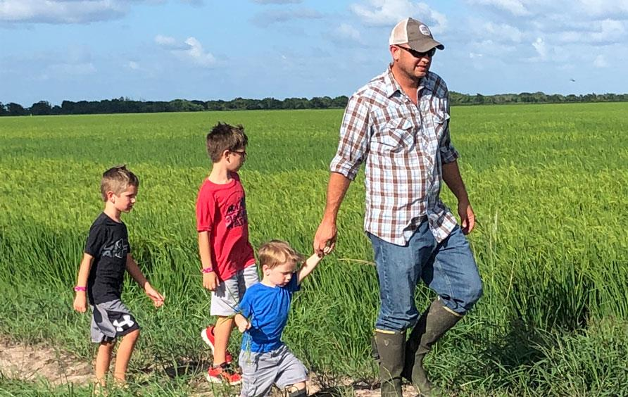 Man wearing plaid shirt, jeans, waterproof boots, and ballcap walks through green rice field followed by three young boys