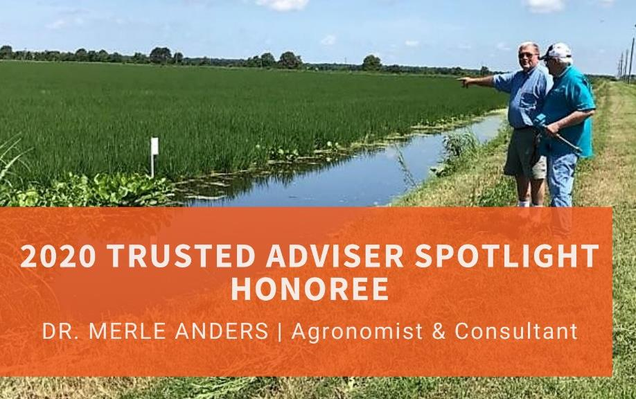 Photo of two men standing near green rice field, orange text box identifies Merle Anders FTM Spotligt
