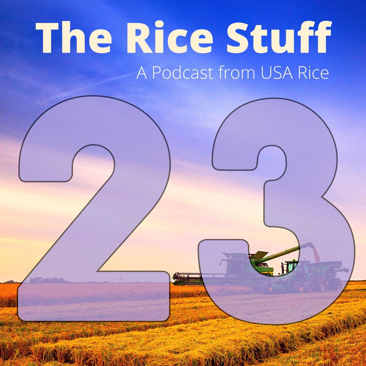 The Rice Stuff Tile Final Ep-23