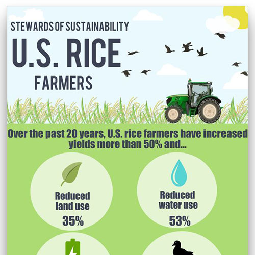 Preview image of the Stewards of Sustainability infographic