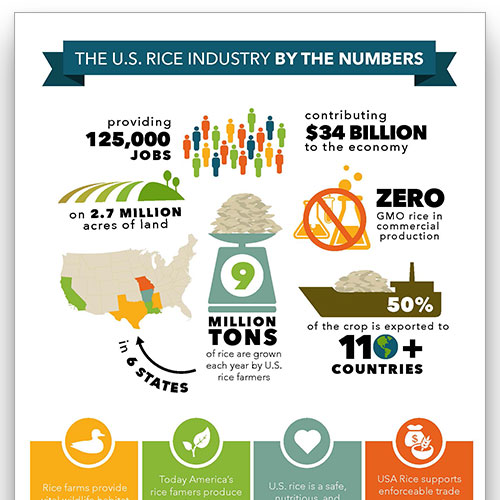 Preview image of the Rice by the Numbers infographic