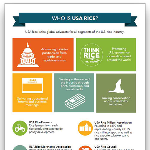 Preview image of the Who is USA Rice infographic