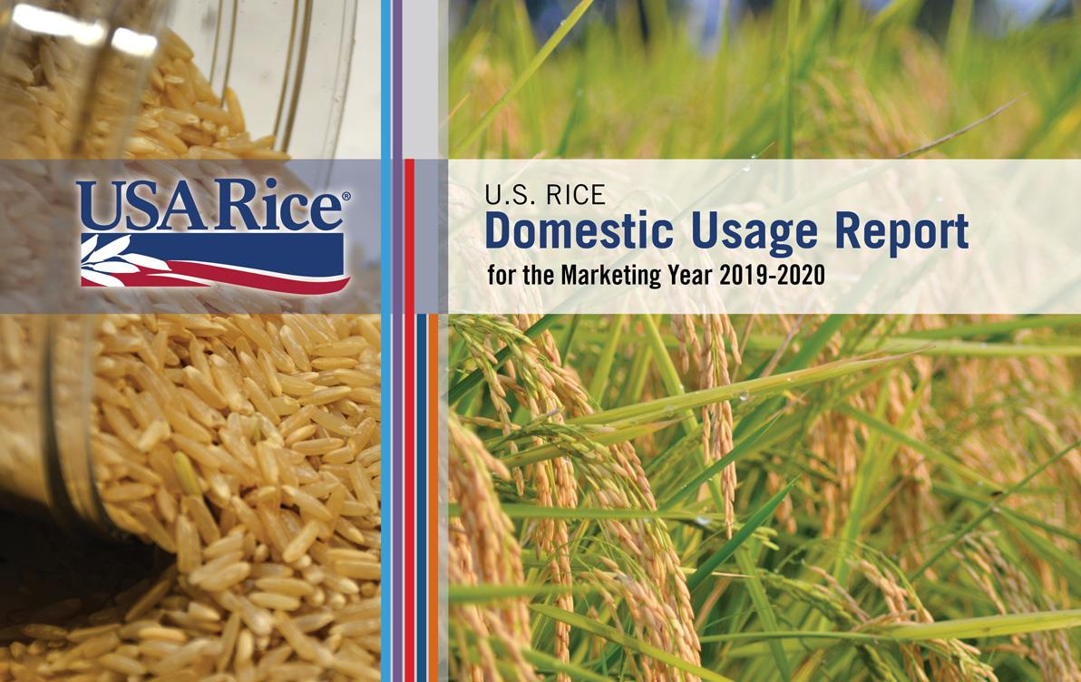 2019-20-DUR-Cover with photos of milled brown rice (left) and mature rice field (right)