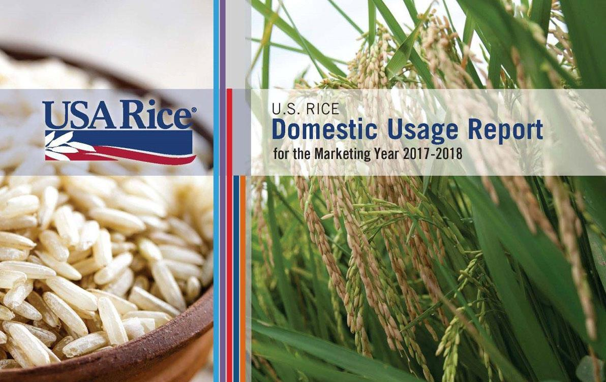 DUR cover page with closeup of rice bowl on left and mature rice plant in field on right