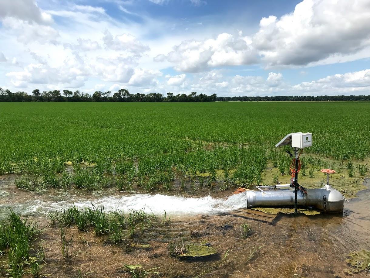 New technology like this soil moisture sensor make irrigation practices more efficient