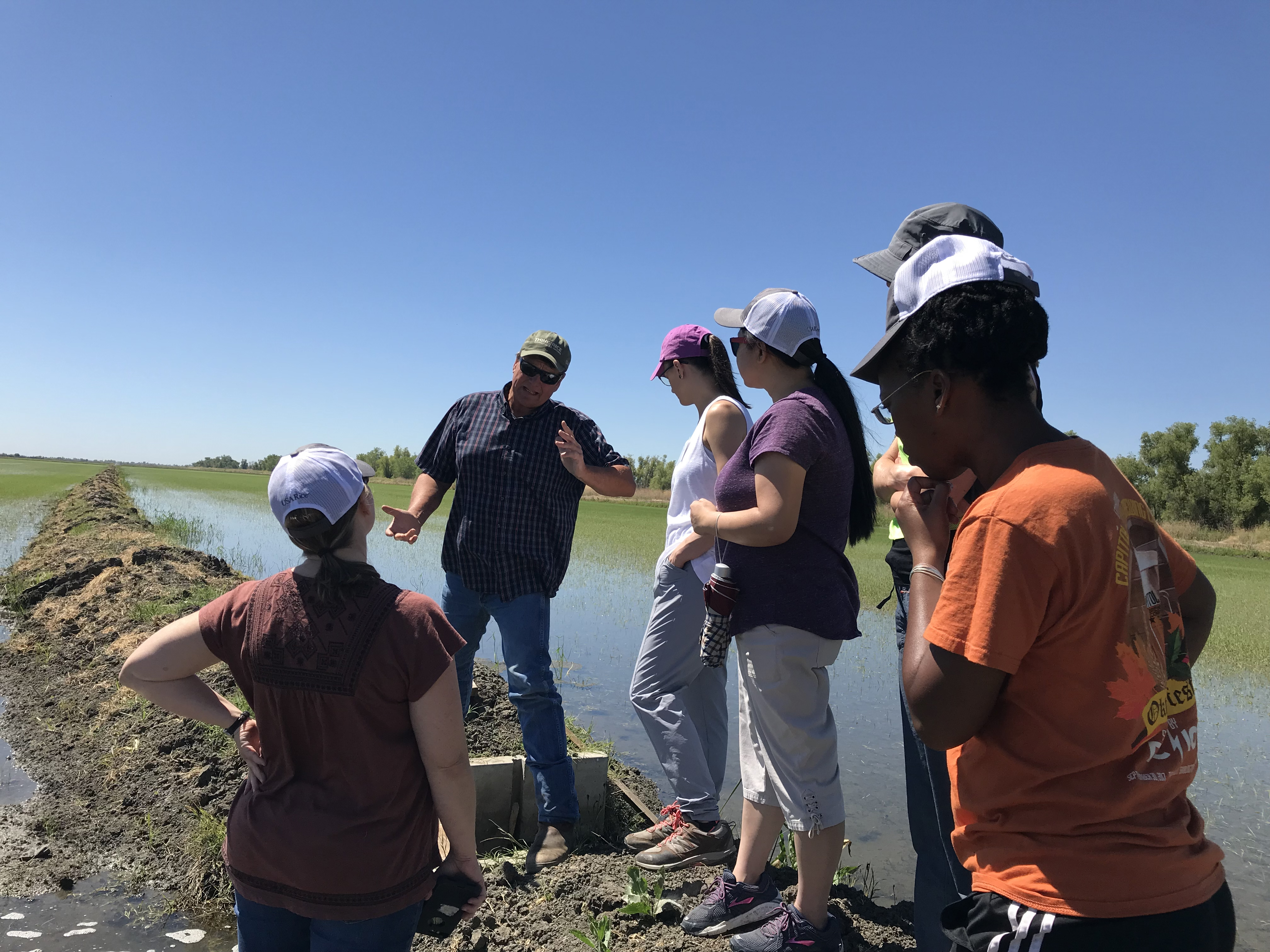 EPA scientists get a lesson in rice production irrigation from California farmer Mike DeWitt