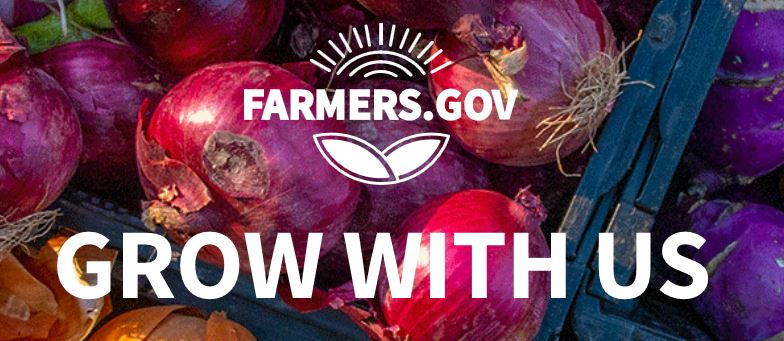 "Farmers.gov logo, website url and text ""Grow With Us"" on background of photo of red onions in a wooden, blue crate"