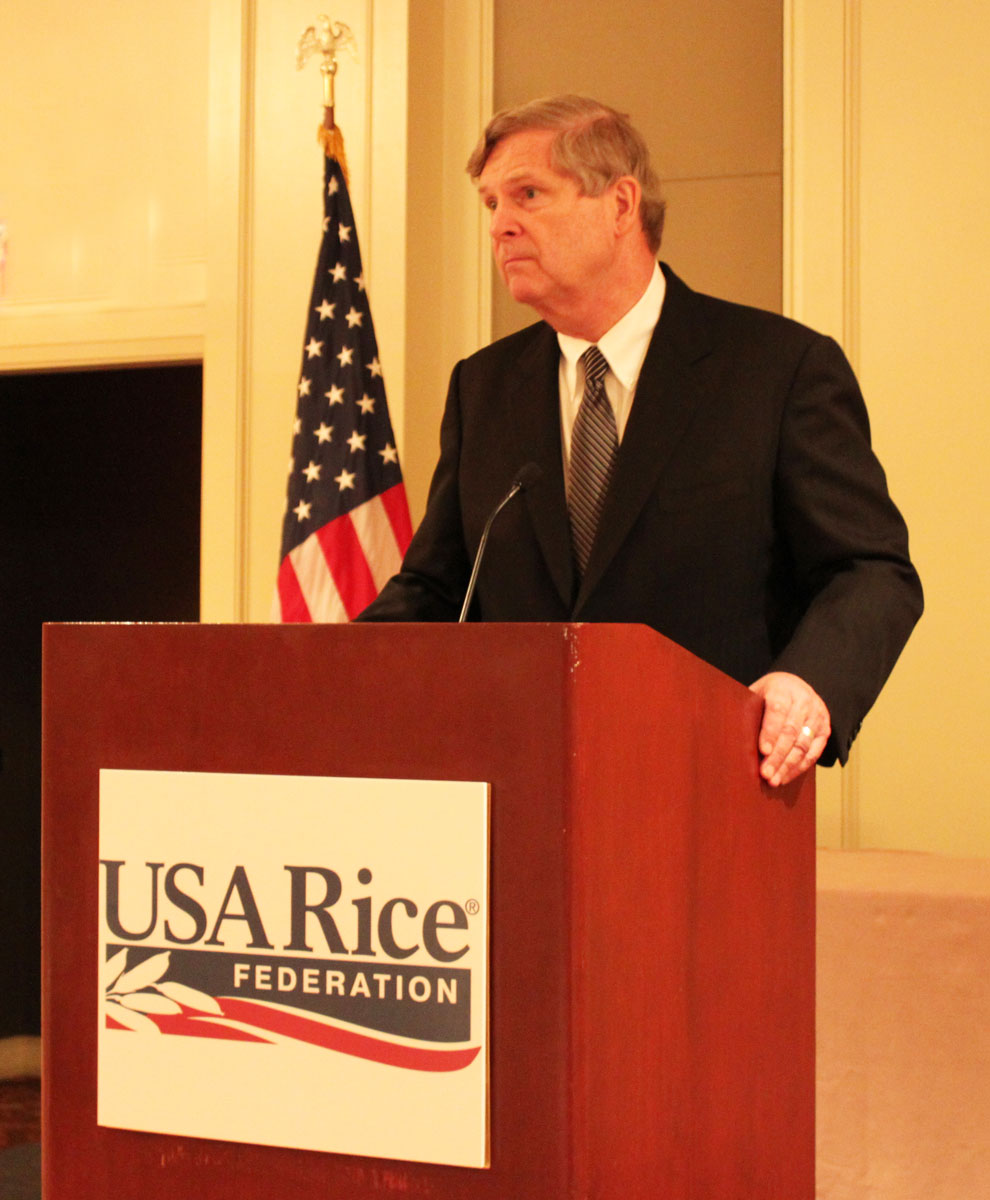 White man in business suit stands behind podium with USA Rice Federation signage, American flag in background