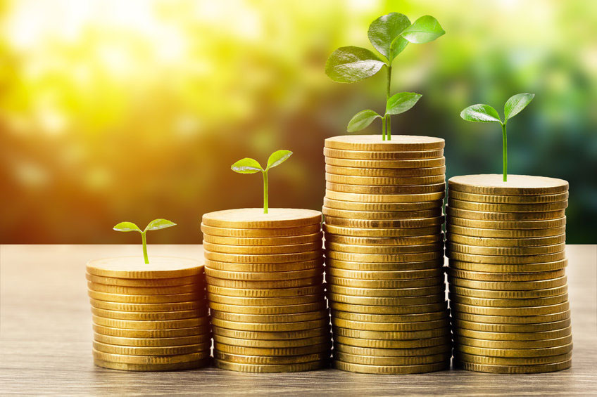 Seedlings grow out of stacks of gold coins