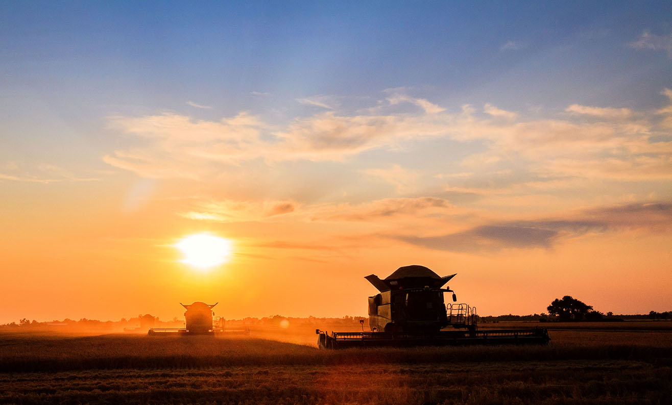 Two combines in field at sunset, orange sky