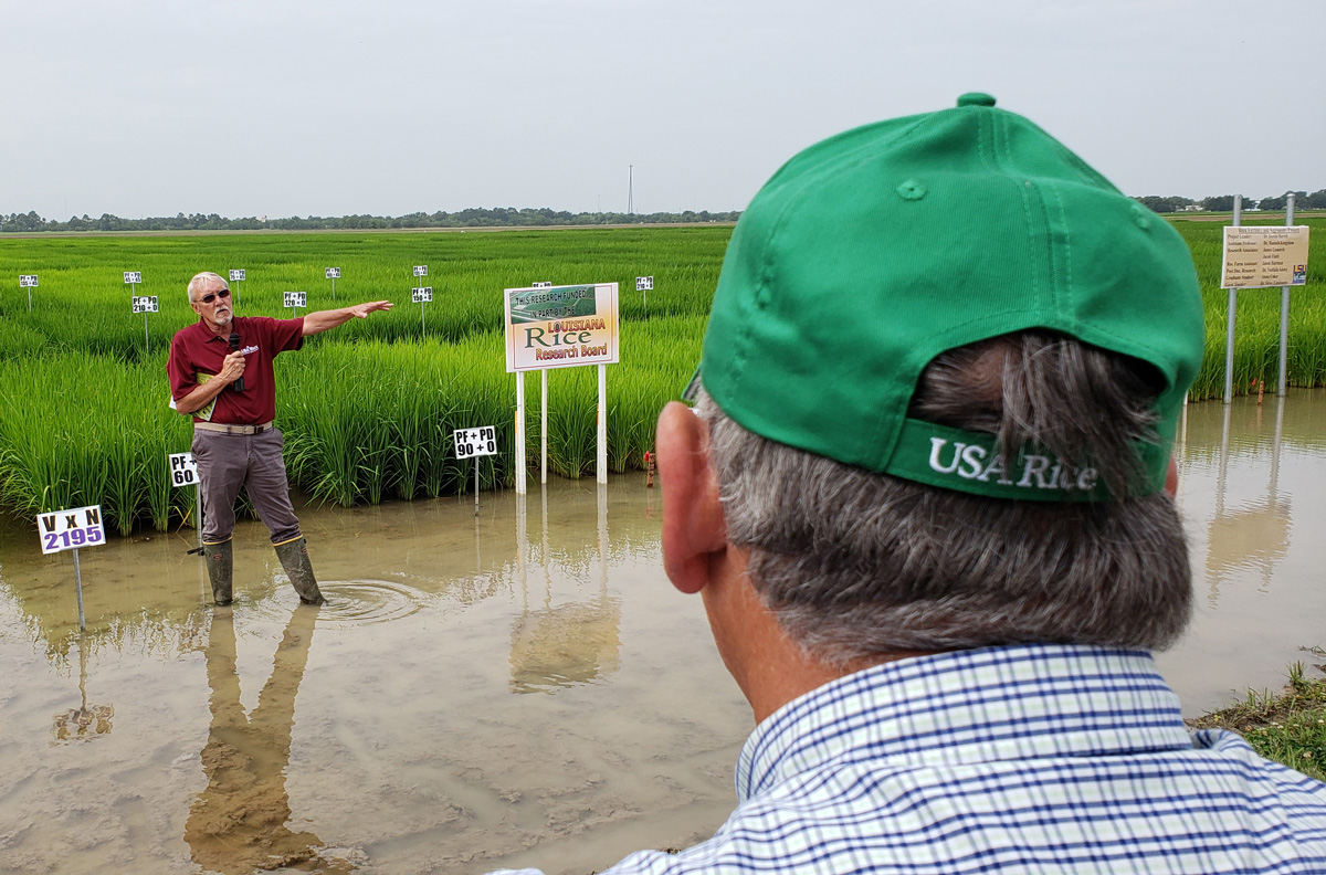Man stands in flooded rice field, holding microphone & pointing, another man wearing a USA-Rice-ballcap faces him and away from the camera