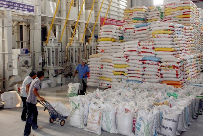 Rice bags stacked to ceiling in warehouse, workers transport more bags using dolly