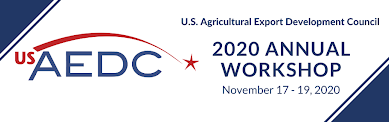 USAEDC 2020 Annual Workshop logo