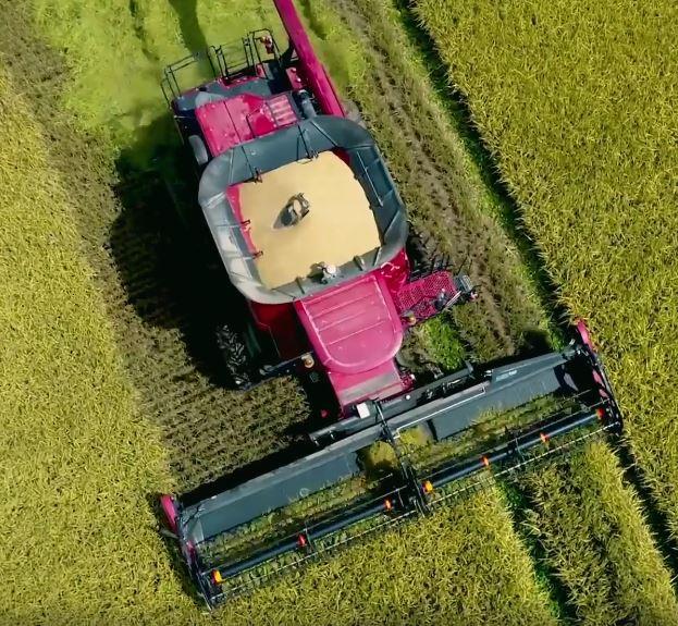 Overhead harvest shot