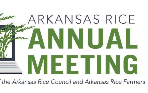 AR Rice Annual Meeting with computer and rice panicles