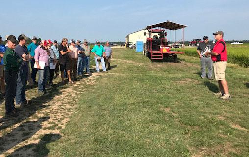 Group of casually dressed people stand facing a couple men giving a presentation in front of a rice field, tractor with wagon in background