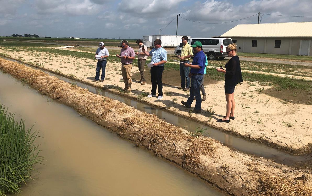 Group of people stand near irrigation canals, blustery clouds in background
