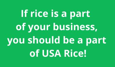 Rice Business graphic