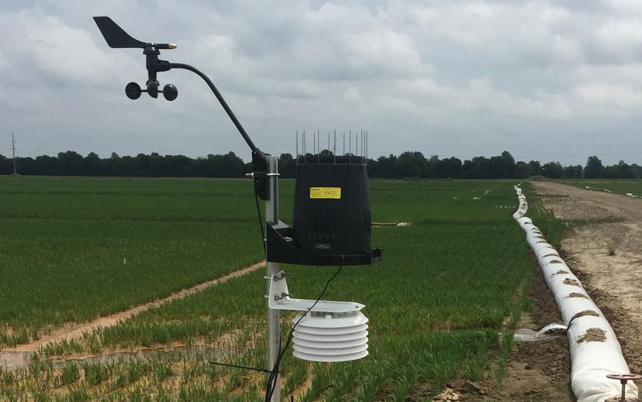 Solar powered weather station set up next to rice field
