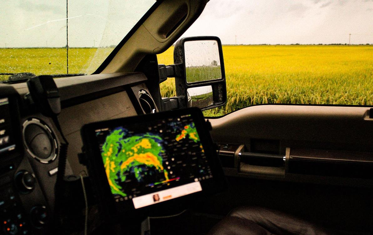 Storm tracker in truck cab parked next to mature AR rice field