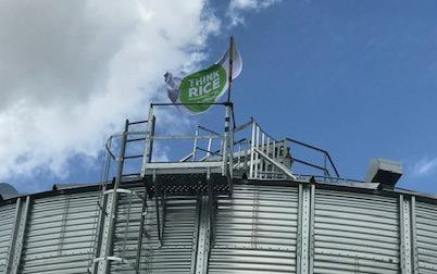 "White flag with round green logo with text ""Think Rice,"" flying over grain bin"