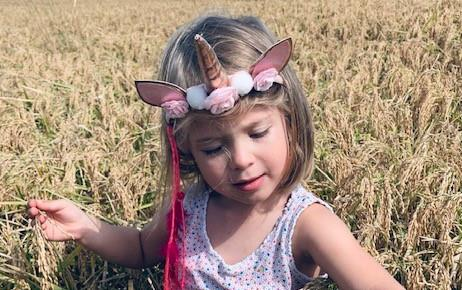 Young girl with unicorn headband stands in ripened, yellow rice field