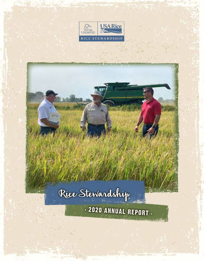 Annual Rpt shows three men standing in golden rice field in front of combine