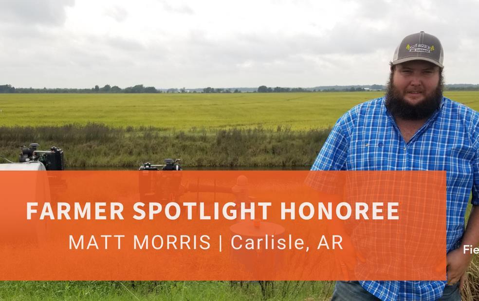 Farmer Spotlight Honoree Matt Morris, standing in a green rice field, wearing blue plaid shirt and ballcap