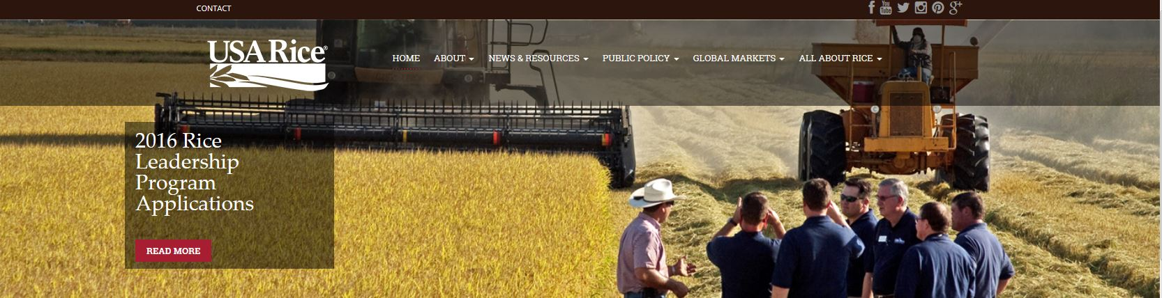 Banner from new USA Rice website
