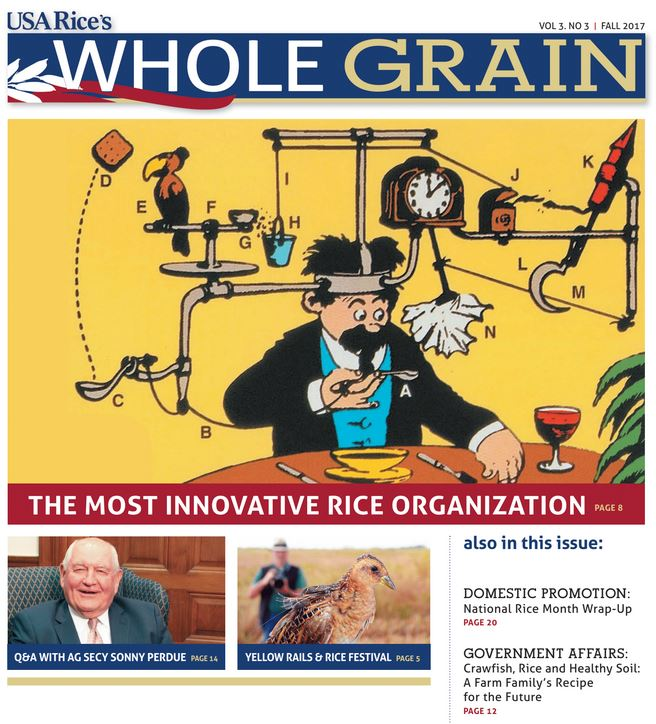 Fall 2017 Whole Grain Cover-featuring colorful Rube Goldberg cartoon on a yellow background