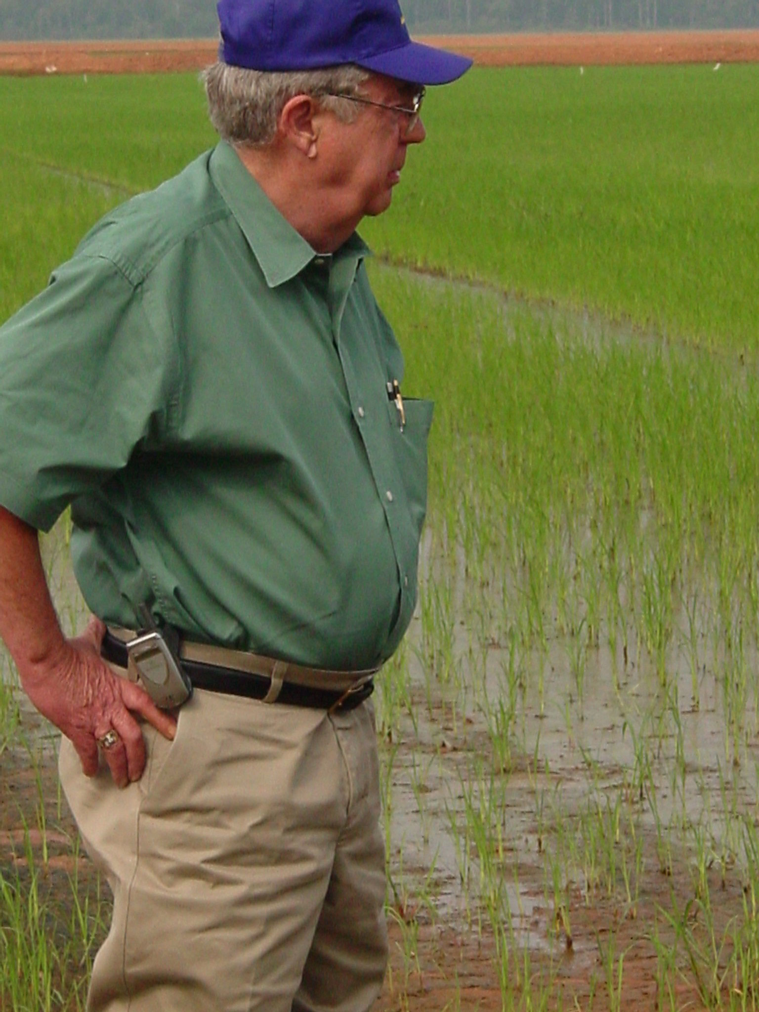 In-Memory-photo of Dr.-Joseph-Musick standing in a rice field