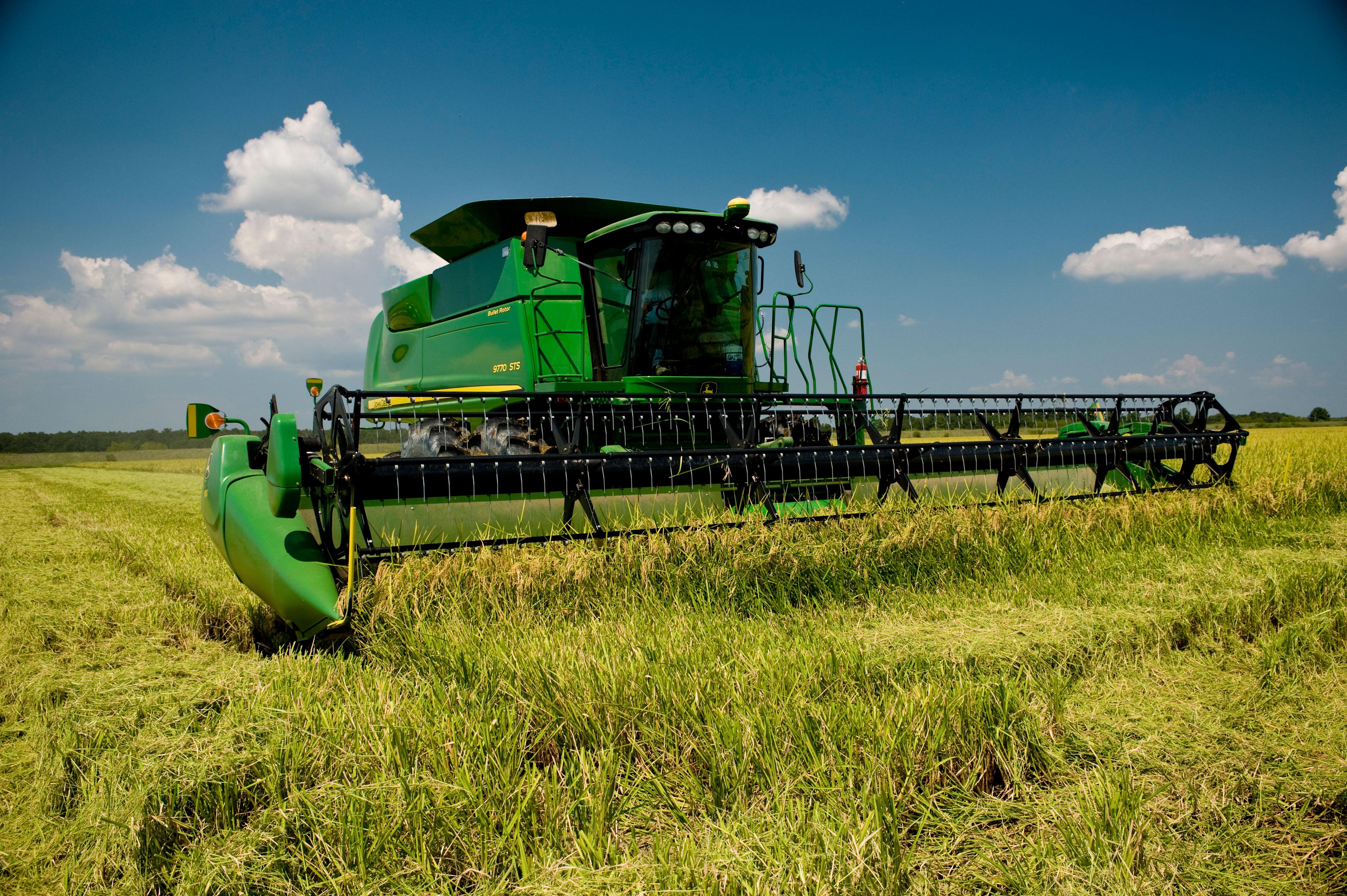 Green John Deere combine harvesting rice