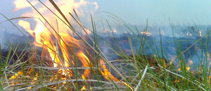 Field crop refuse burn with flames in foreground and smoke in background